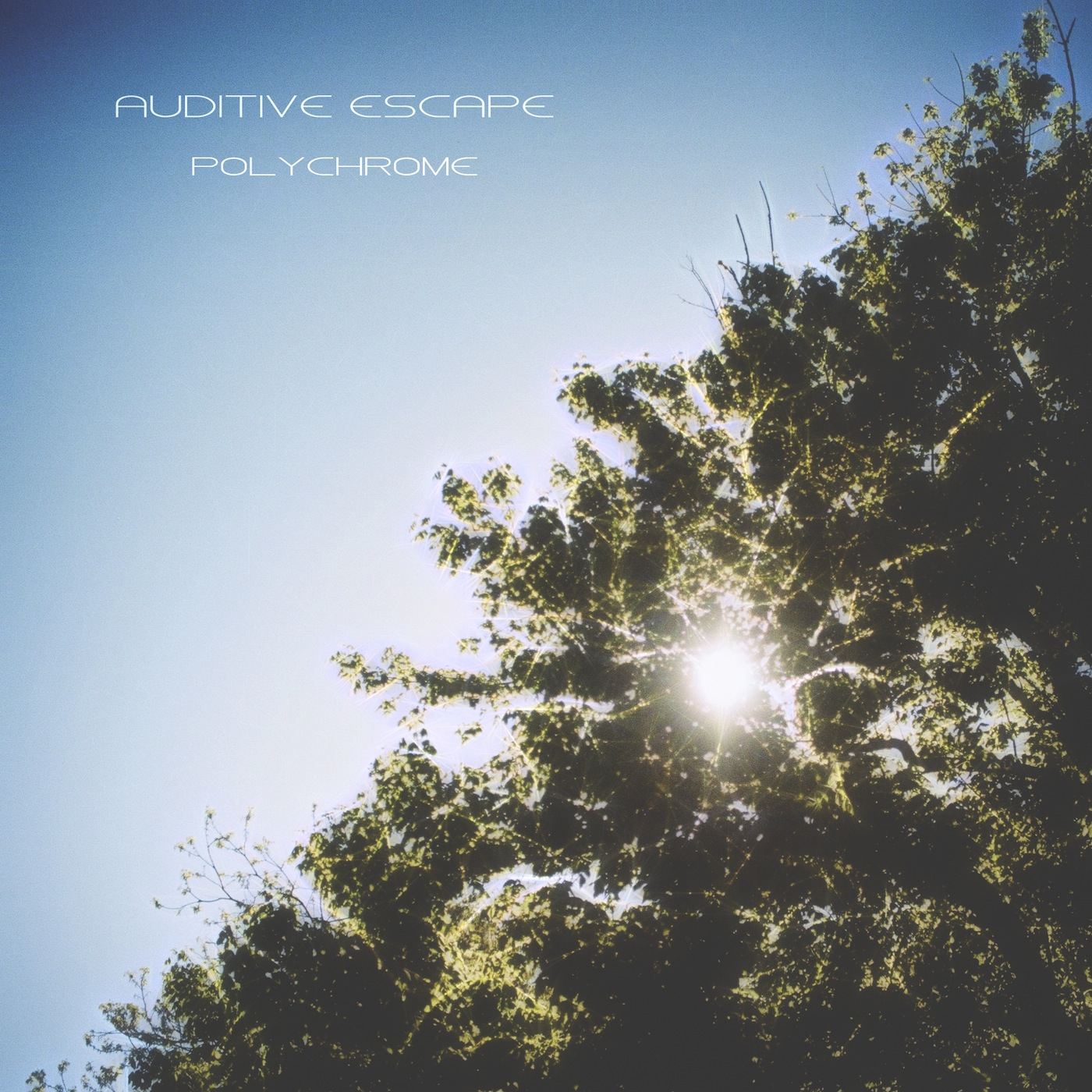 Polychrome (LP) – Auditive Escape