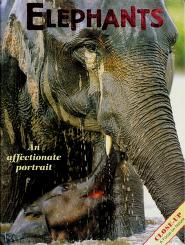 Cover of: Elephants | Jean Brody